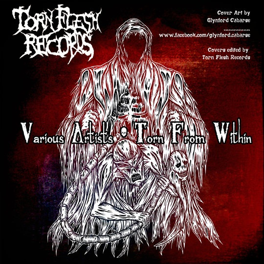 Free Download Mp3 VA-Torn Flesh Records Presents Wasteland