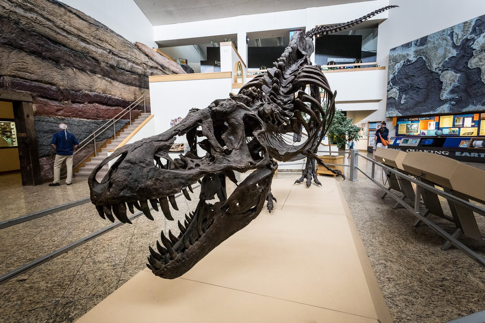 The New Mexico Museum of Natural History and Science is open every day from 9 a.m. to 5 p.m., and from to 9 p.m. on the first Friday of every month.