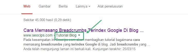 Contoh breadcrumbs yang berhasil di index Google.