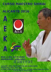 Curso Maestro Shirai Alicante 2016