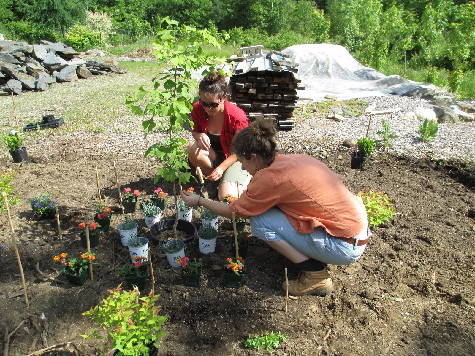 Landscape Gardening Apprenticeships : The view from wilder hill mandala garden project