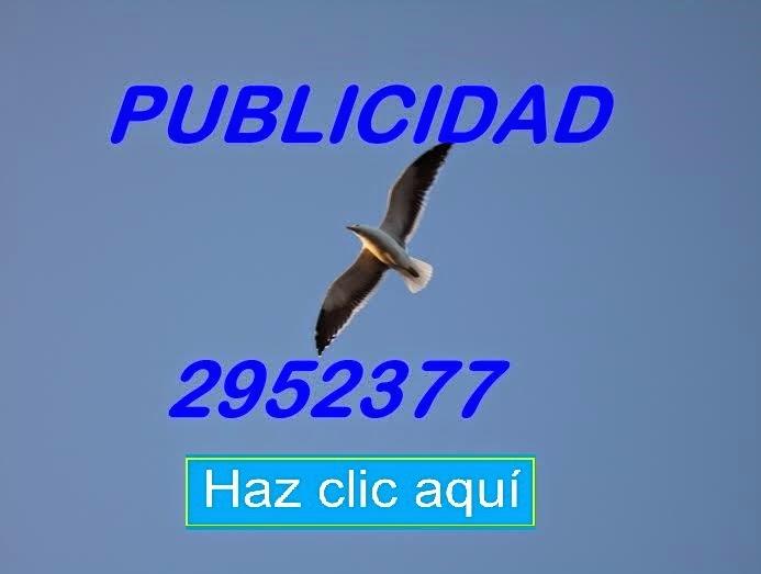 PUBLICIDAD A TODA PRUEBA