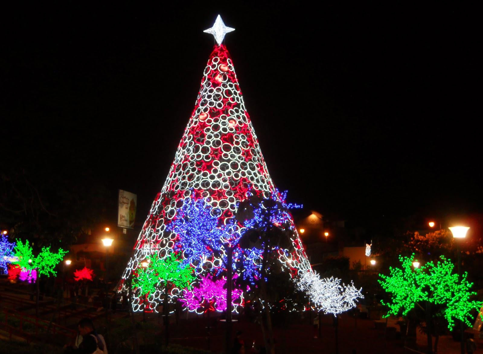 Costa Rica Sabbatical: Christmas in San Jose, Costa Rica 2011