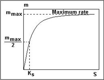 Pengaruh konsentrasi substrat terhadap kecepatan pertumbuhan spesifik