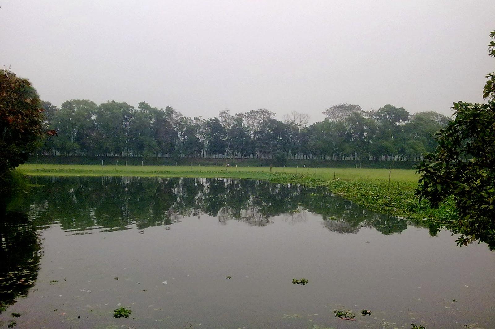Sonargaon lake
