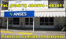 ANSES LEONES