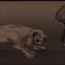 Ο σκύλος Ντικ του Γ. Ρίτσου και του Θ.Μικρούτσικου...
