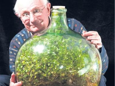 David menunjukkan taman mini dalam botol glob yang boleh bertahan tanpa air dan udara.