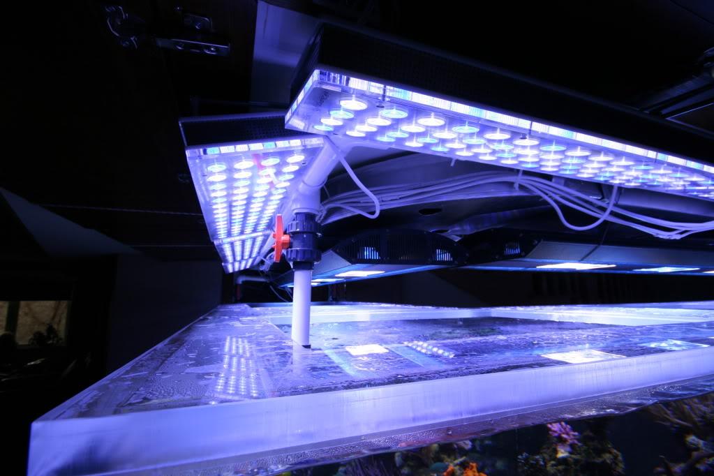 Orphek Aquarium LED Lighting