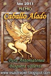 PREMIO CABALLO ALADO