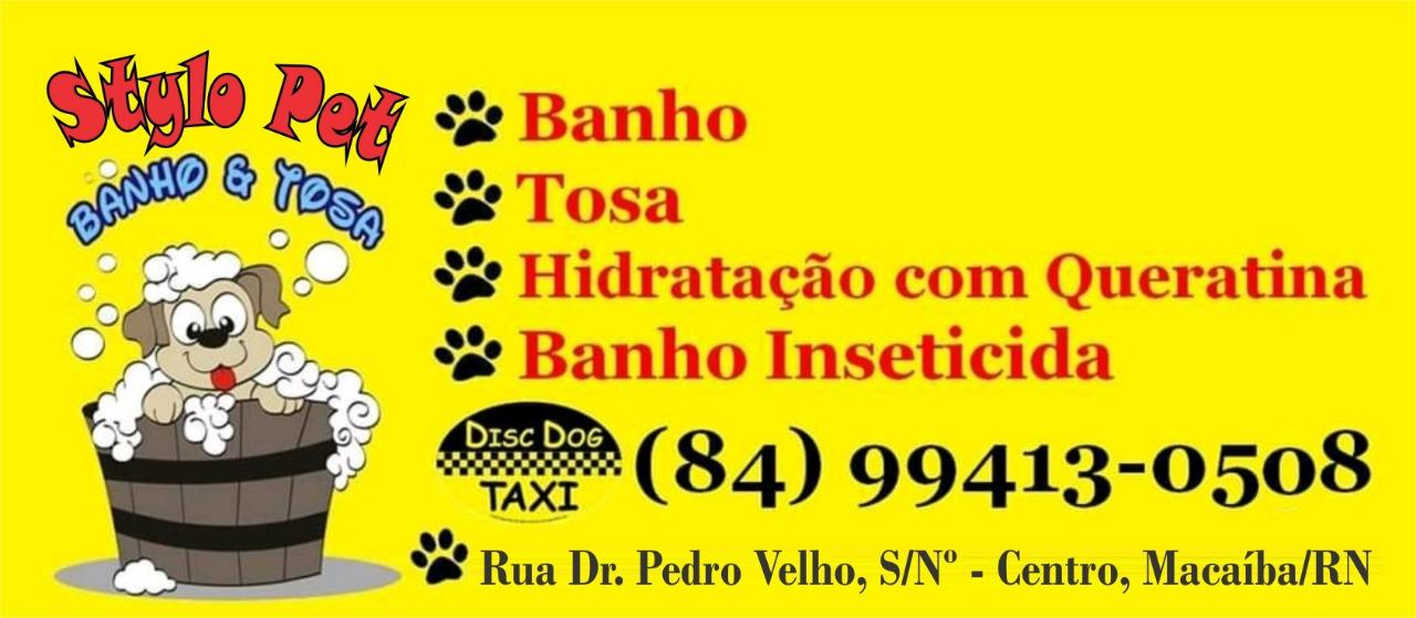 Stylo pet (84)99413-0508