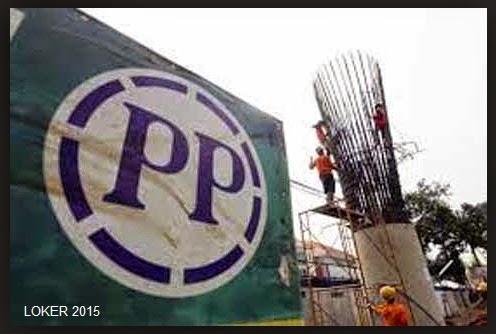 loker BUMN 2015, Peluang karir PP