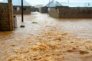Flood submerges Oko Poly as management declares holiday