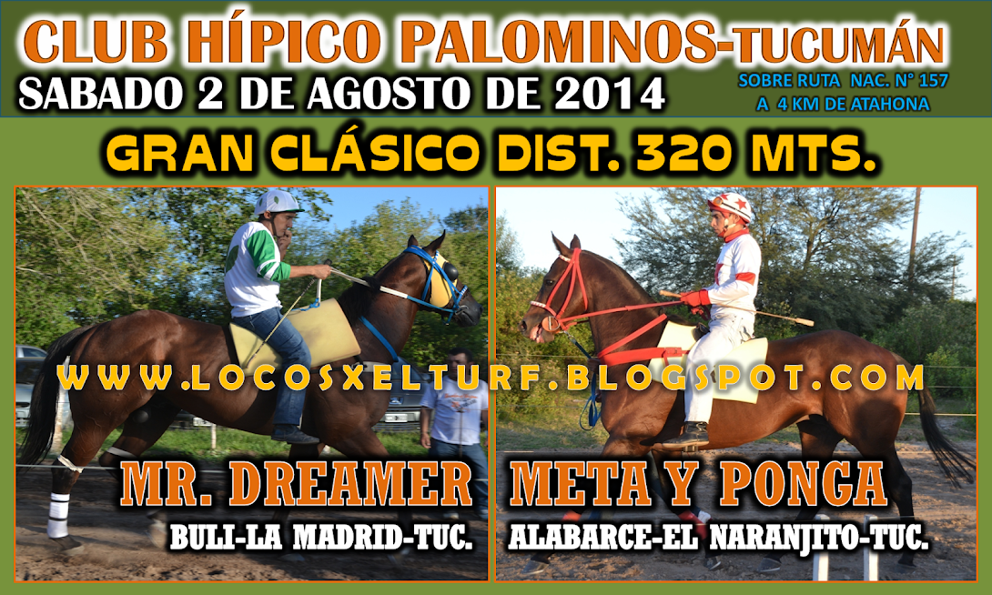 2-08-14-CLAS-HIP. PALOMINOS