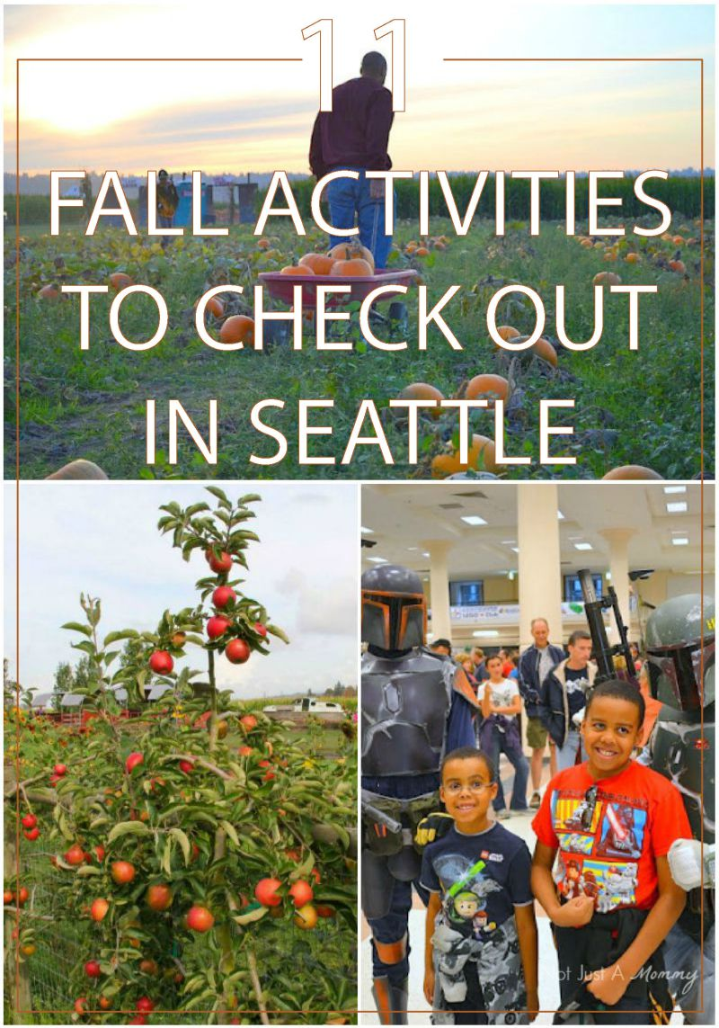 11 fall activities to check out in Seattle