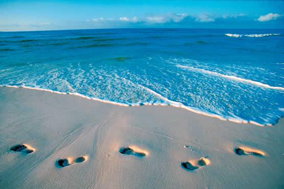 10 Best Beaches Florida,Best Family Beaches Florida,Cocoa Beach Florida,Map of Florida Beaches,bWhite Sand Beaches Florida