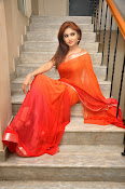 Sony Charista Glamorous in Saffron saree-thumbnail-10