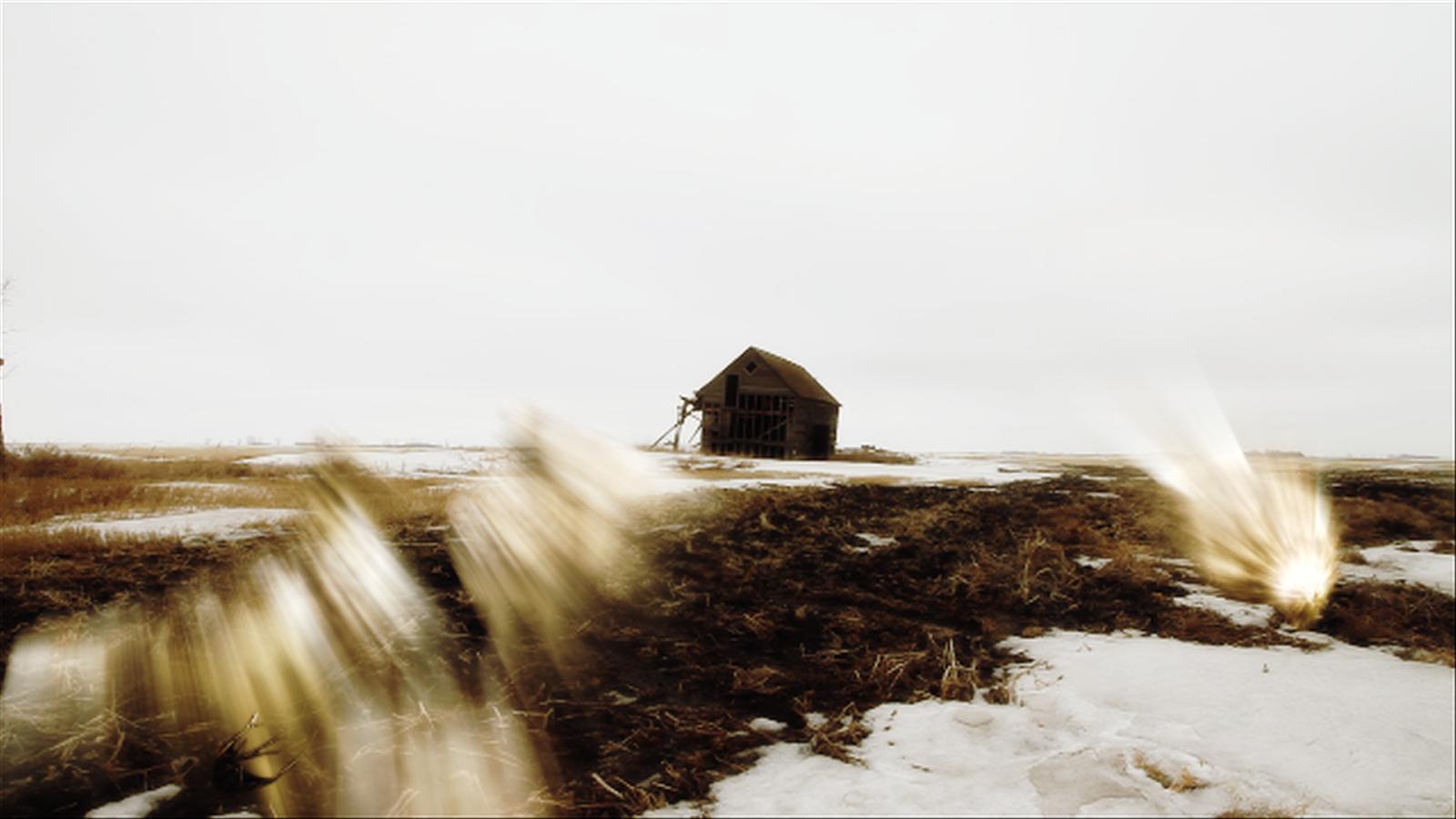 jillian mcdonald, the thaw