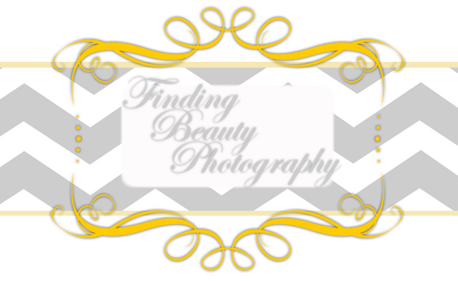 Finding Beauty Photography