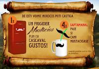 "Concurs Napolact 2013 ""Rascoala mustatilor de lapte"""