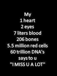 My   1 Heart  2 Eyes