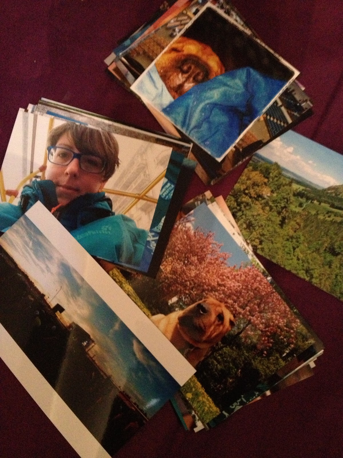 Fotos; Bestellen; Smartphone; I-Phone; Fotobuch