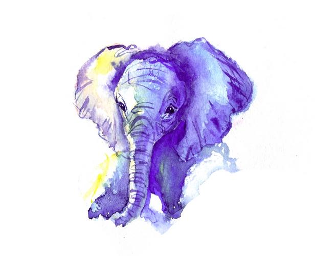 слоненок акварель