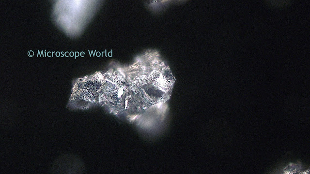 Darkfield metallurgical microscope image.
