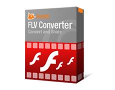 flvconverter