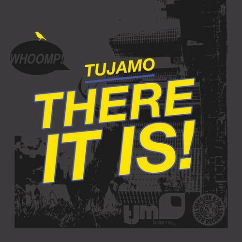 Tujamo-There It Is-PROMO-CDR-FLAC-2013-WRE Download