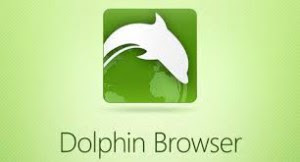 Dolphin Browser v11.4.19 Apk