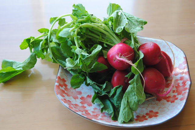 salad of radishes+mustard dressing