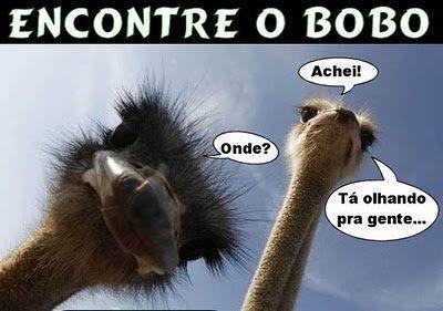 Mensagens para Facebook e Imagens engraçadas Encontre o BOBO