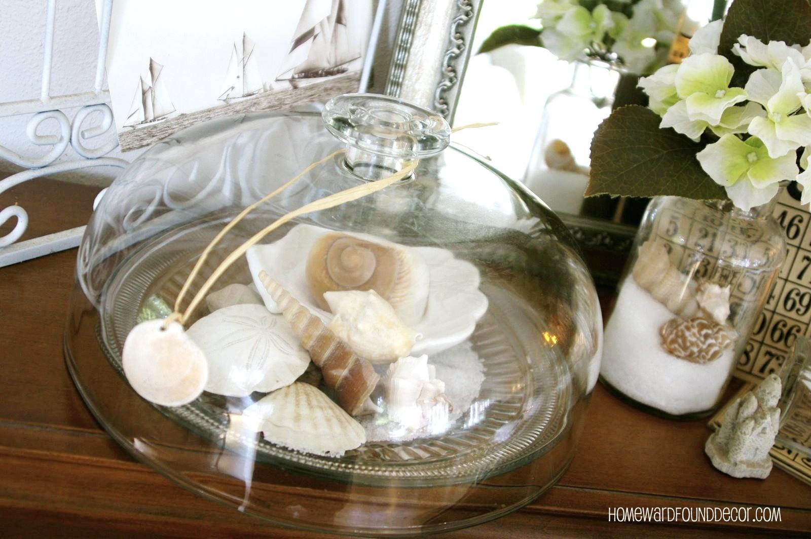 5 Ideas For Seashell Displays Homewardfound Decor
