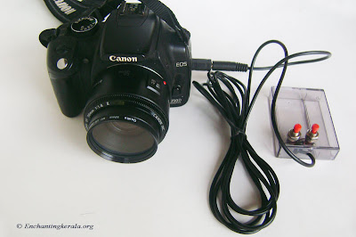 DIY Remote Shutter Release Cable / Trigger for Canon Cameras