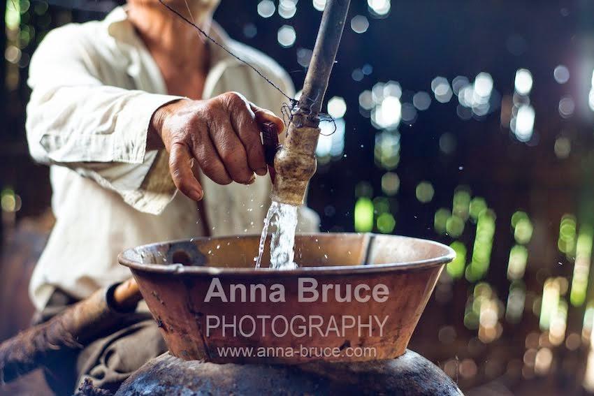 Anna Bruce