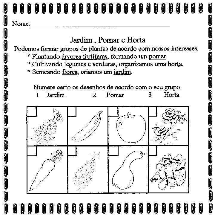 horta jardim e pomar:Ciências – Atividades sobre as plantas — Atividades sobre as plantas