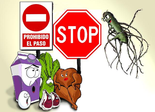 Salmonella, peligrosa más en verano