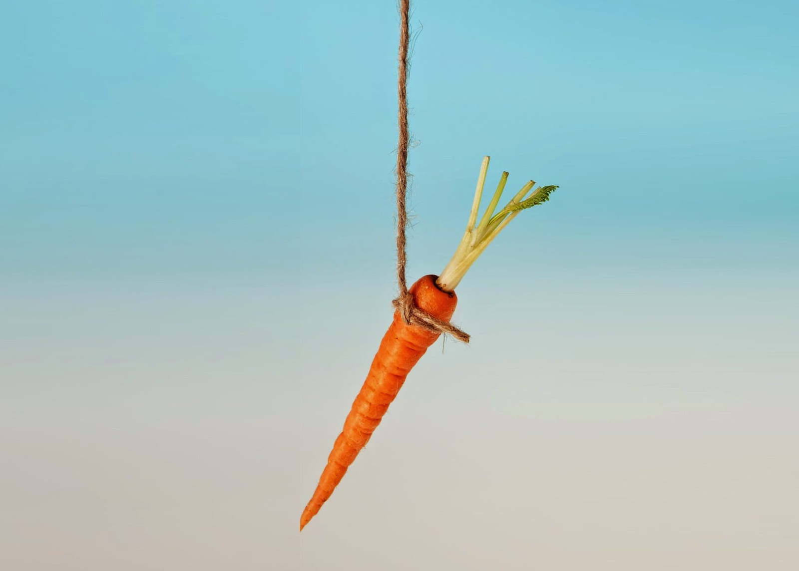 Carrot Stick Motivation