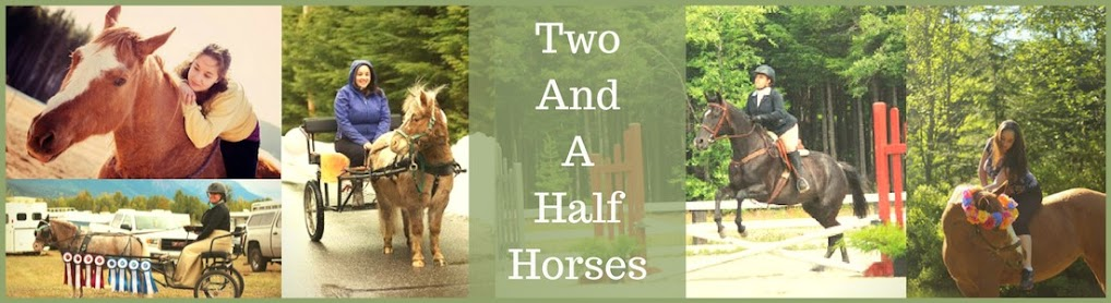 Two and a Half Horses