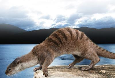 Mustelidae fosil Potamotherium