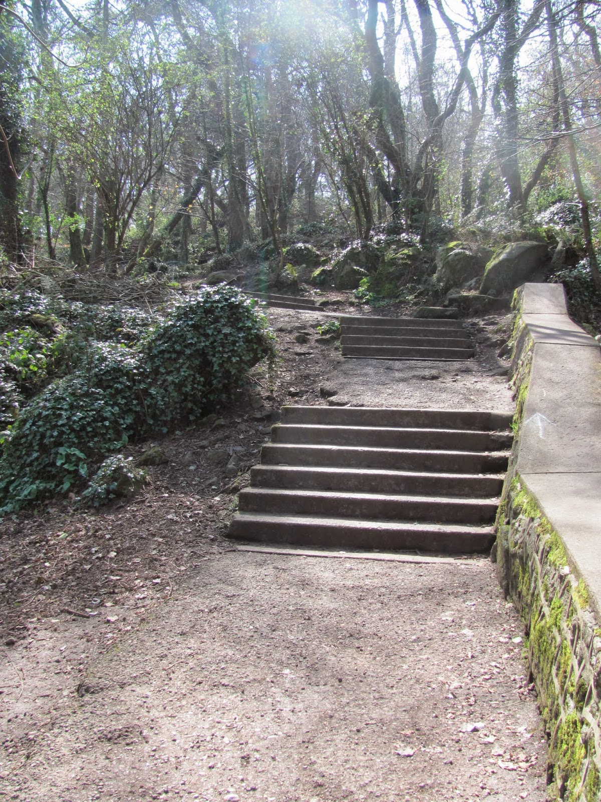 Steps up Killiney Hill