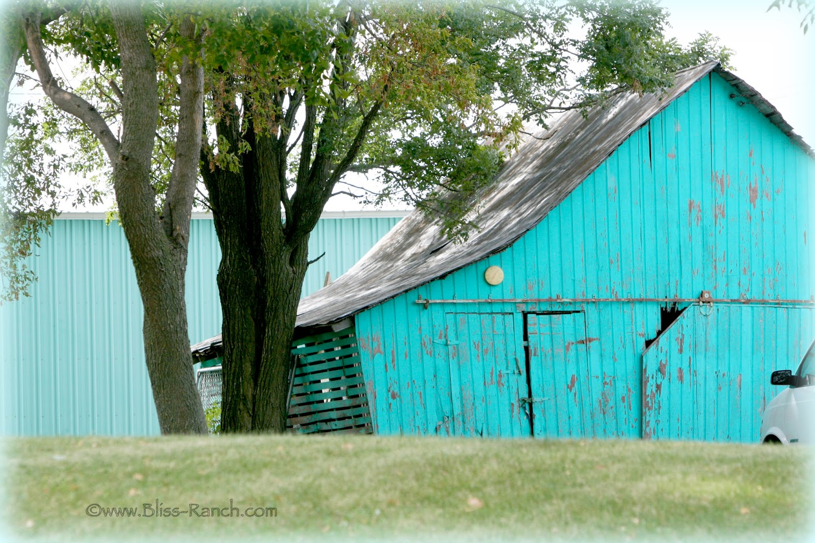 Aqua Barn Wood Minnesota Bliss-Ranch.com