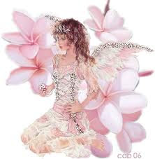 Angel Photos