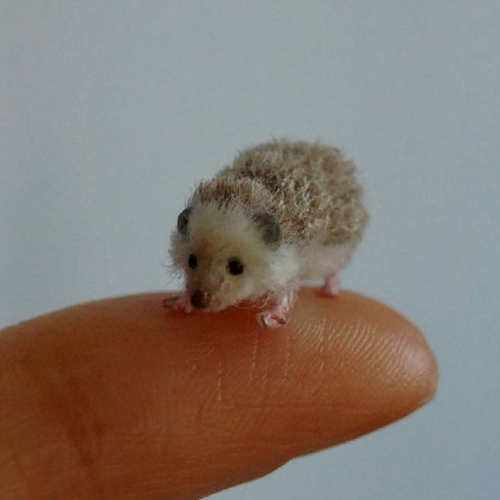 22-Hedgehog-ReveMiniatures-Miniature-Animal-Sculptures-that-fit-on-your-Hand-www-designstack-co