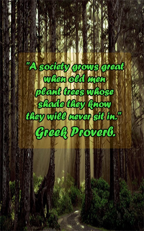 """A society grows great when old men plant trees whose shade they know they will never sit in."" — Greek proverb."