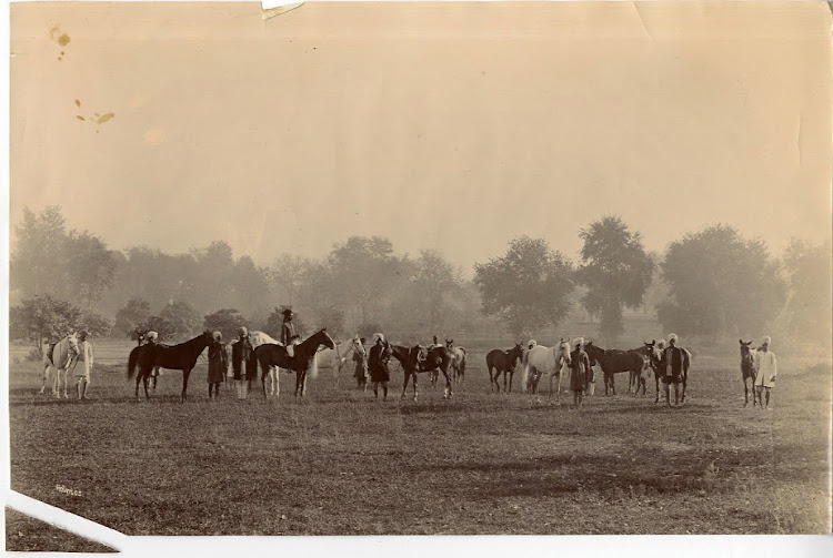 Sikh Grooms with Cavalry Horses - c1890's