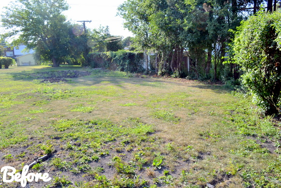 Patio Reveal: Before & After Pictures - Here is more of the old. Ugh, what a backyard we used to have.
