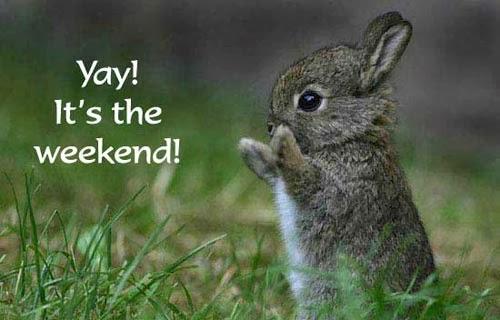 Bildergebnis für happy weekend