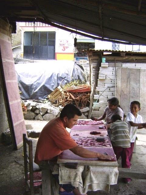 Huasteca en Puebla
